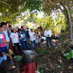 Capacitan productores de Ucayali para mejorar producción de plátano