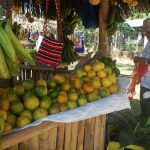 Consolidan a organizaciones de productores de naranja en San Martín