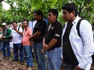 Coordinan acciones en torno al cultivo del cacao