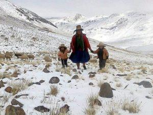 Cusco: Gobierno Regional entregará ayuda humanitaria por bajas temperaturas