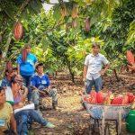 Devida invirtió más de s/145 millones en los últimos cinco años en la región Huánuco