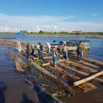 Golpe duro contra la tala ilegal en Ucayali