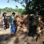 Incautan madera ilegal en Madre de Dios