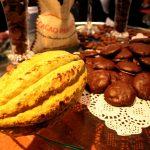 Realizarán desde mañana primer censo de stock de cacao en 16 regiones productoras