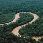 Río Amazonas redujo su nivel y pasó de estado de alerta naranja a amarilla