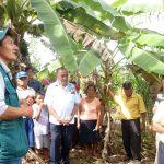 Senasa desarrolló jornada de atención sanitaria en Amazonas