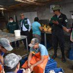 Senasa y autoridades fiscalizadoras intervienen mataderos clandestinos en Ayacucho