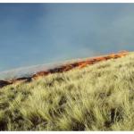 Continúan trabajos de extinción de incendio forestal en Cusco