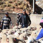 Despliegan brigadas agrarias en zonas altoandinas en Junín