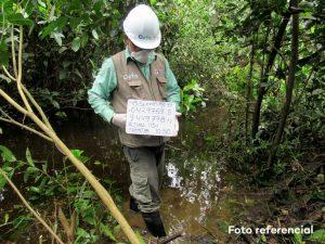 OEFA supervisa derrame de petróleo en el Oleoducto Norperuano en Loreto