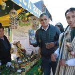 Desarrollan Festival de la Maca 2019 en Junín