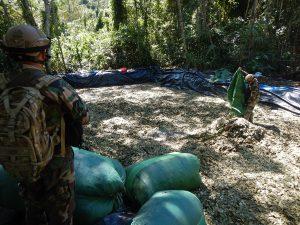 Destruyen siete laboratorios clandestinos de elaboración de PBC en Junín