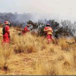98 incendios forestales se han registrado en el país desde el 27 de julio