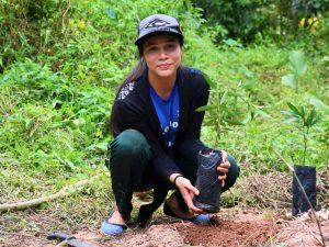 Coordinan plan de reforestación para la región San Martín