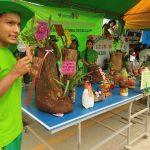 Estudiantes del Vraem participan en concurso de maceteros ecológicos