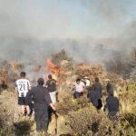 Sepa qué hacer ante la ocurrencia de un incendio forestal
