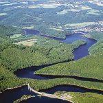 Serfor destacó acuerdo entre el Perú y Colombia para proteger la Amazonía