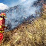 Implementan acciones preventivas ante posible ocurrencia de incendios forestales