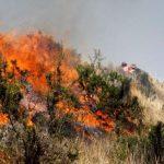 Sepa qué hacer ante ocurrencia de incendios forestales
