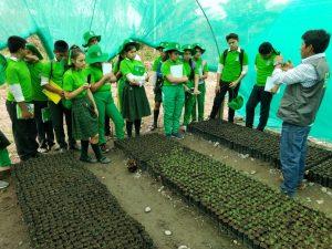 Vraem: Estudiantes participan en pasantía a viveros de proyecto forestal