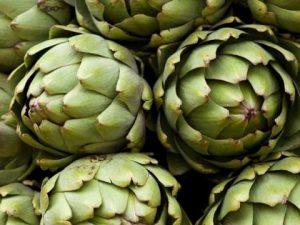 Trujillo: Alistan preparación de la ensalada de alcachofa más grande del mundo