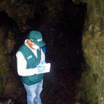Amazonas: Realizan control poblacional de murciélagos en Yambrasbamba