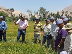 Aseguran que la agricultura familiar debe modernizarse para ser productiva y sostenible