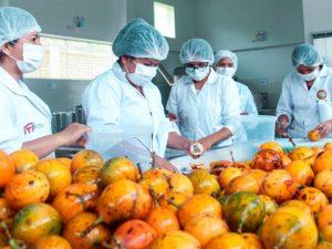 Huánuco: Elaboran normas técnicas que impulsen la producción de la granadilla