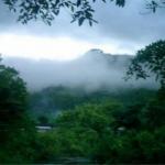 Senamhi pronosticó descenso de temperatura en selva centro y sur