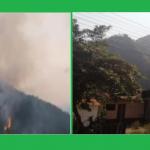 Incendio forestal registrado en Junín fue extinguido en su totalidad