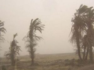 Sepa qué hacer ante la ocurrencia de vientos fuertes