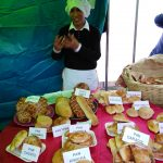 Huancavelica: Jóvenes presentaron planes de negocio para el autoempleo en concurso del MTPE