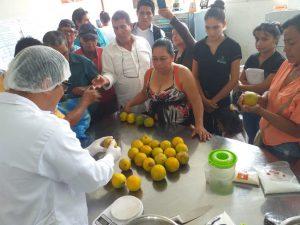 San Martín: Impulsan dar valor agregado en la producción de naranjas