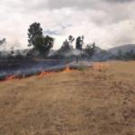 Extinguen incendios forestales en Cusco, Áncash, Apurímac y Ayacucho
