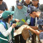Estudiantes usarán control biológico en la producción de cultivos en Ayacucho
