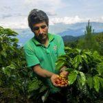 El Gobierno impulsa la producción y consumo interno del café