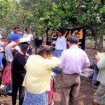 San Martín: Desarrollan encuentro de productores de naranja