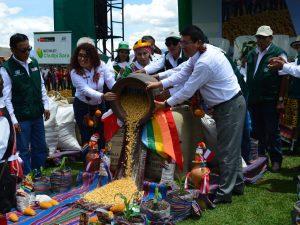 Cusco: Presentan primer maíz Chullpi Sara con certificación internacional