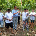Entregan herramientas a productores cacaoteros sanmartinianos en El Dorado