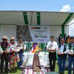 Entregan nueva avena forrajera para mejorar economía de 5 mil ganaderos del Cusco