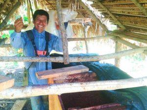Fortalecen producción de cacaoteros en San Martín