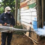 Madre de Dios: 11 mil viviendas fumigadas en campaña contra el dengue