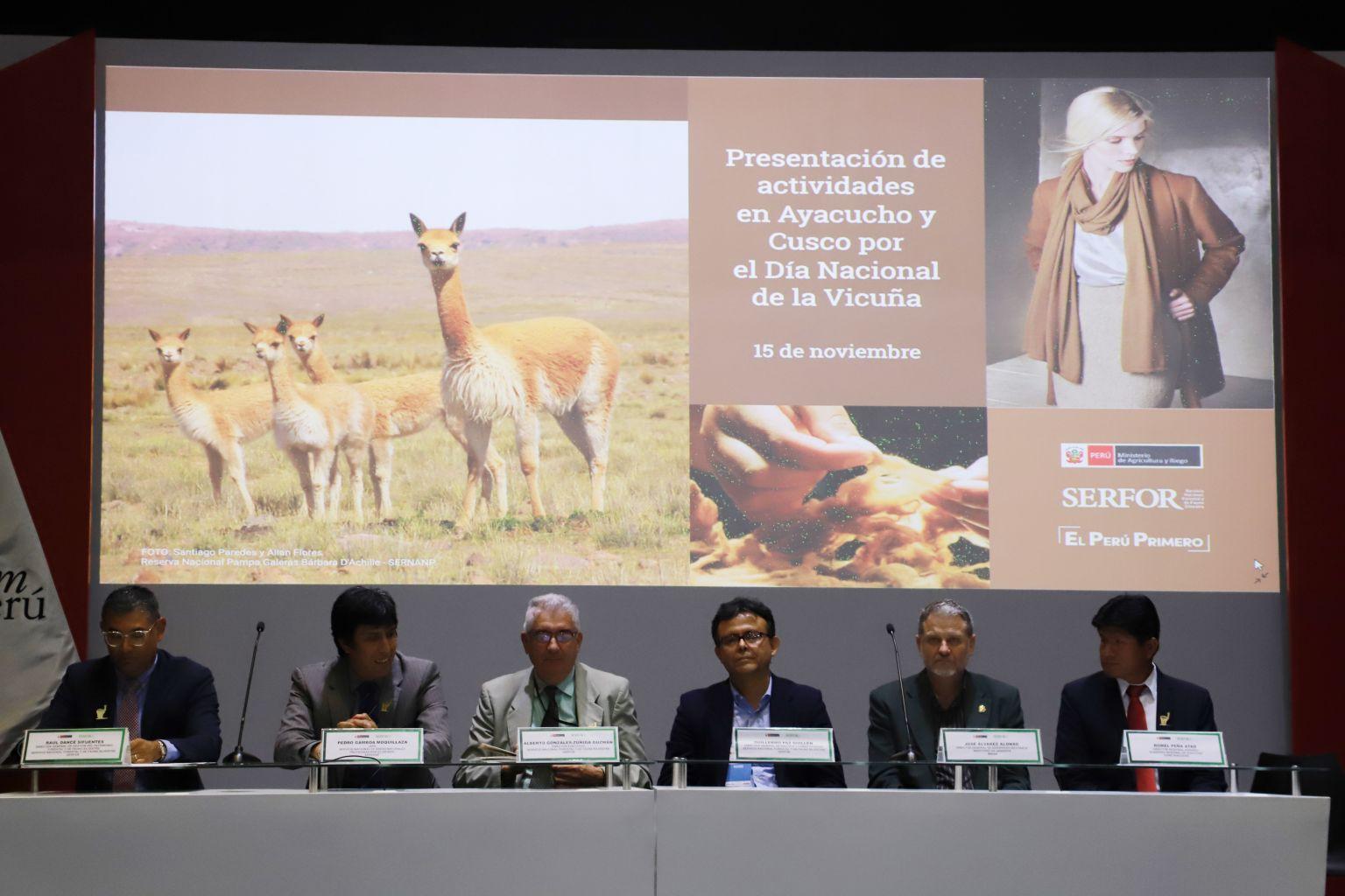 Preparan el I Foro Nacional de Vicuña en Ayacucho - INFOREGION
