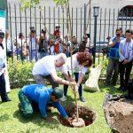"""Implementan campaña """"10 Millones de Árboles Urbanos al 2021"""""""