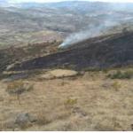 Ayacucho: Extinguen incendio forestal en el distrito de Huamanguilla
