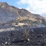 Ayacucho: Extinguen incendio forestal en Chumpi