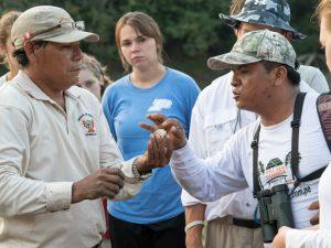 Loreto: Taricayas serán liberadas durante festival de tortugas