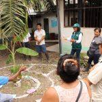 Ucayali: Productores de plátano y piña se capacitarán en Escuelas de Campo del Minagri