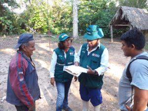 Ucayali: Supervisan cumplimiento de normas orgánicas en producción del cacao