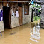 Madre de Dios: Tres colegios y ocho asentamientos humanos inundados